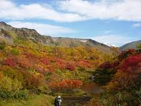 紅葉の式部沼(9月).jpg