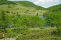 新緑の東雲湖(6月).jpg
