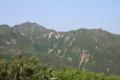 カミホロ分岐付近から見た富良野岳(8月).png