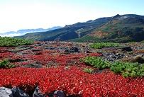 黒岳山頂から(9月).jpg
