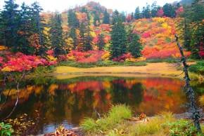 滝見の紅葉