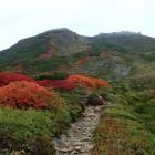 白雲岳紅葉